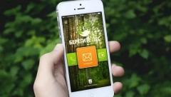 Теперь татарстанцы смогут использовать специальное приложение, чтобы сообщить о происшествиях в лесу
