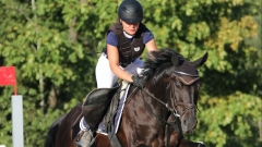 Новости Спорт - В Казани пройдут чемпионат и первенство Республики Татарстан по конному спорту