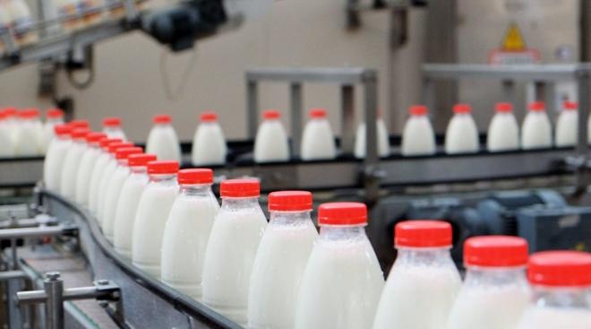 Новости  - В Пестречинском районе откроется новый цех по переработке молока