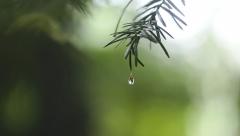Новости Погода - Завтра по Татарстану ожидаются дожди и грозы