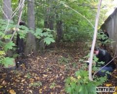 Новости  - В Нижнекамске нашли труп мужчины, провисевший на дереве более полугода