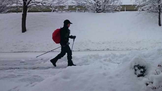 Бесплатные тренировки по скандинавской ходьбе стартуют в Казани