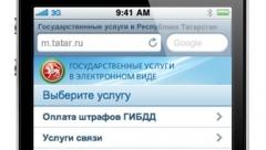 Новости  - Татарстанцы совершили 5,7 млн платежей через портал госуслуг РТ