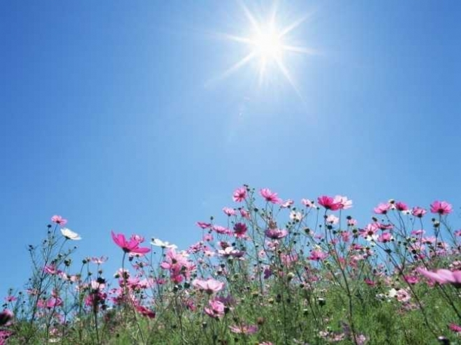 Новости  - В Татарстане сегодня станет теплее