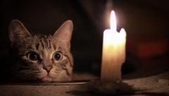 Новости  - Завтра в нескольких районах города выключат свет