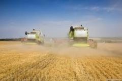 Новости  - Прошедшая неделя  в Татарстане стала самой производительной по уборке урожая