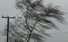 Новости  - Из-за штормового ветра более 11 тыс. жителей Татарстана остались без электроэнергии