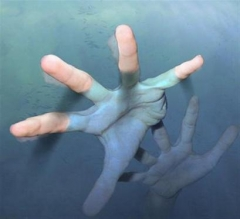 Новости  - Действия следствия по делу об утонувшей девочке признали незаконными