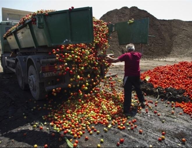 В Татарстане с начала года уничтожили 3 тонны санкционных продуктов
