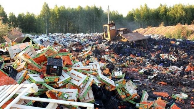 Санкционные продукты в России продолжат уничтожать до конца 2017 года