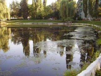 Казанские дайверы поднимут мусор со дна озера Лебяжье