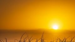 Новости Погода - Температура воздуха днем поднимется до +32º