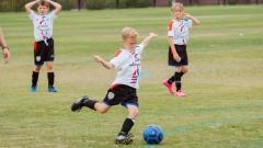Новости  - В Татарстане реализуют проект «Футбол в школе»