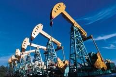 Новости  - В Бугульминском районе РТ открылся нефтяной саммит под председательством Минниханова
