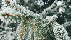 Завтра в Татарстане пройдет небольшой снег