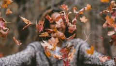 Новости  - 3 октября в Казани ожидается потепление до 20 градусов