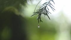 Новости Погода - Завтра по Татарстану ожидается переменная облачность и дожди