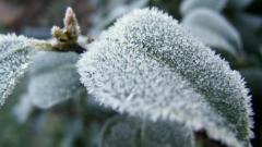 Новости Погода - Завтра в Татарстан возвращаются сильные морозы