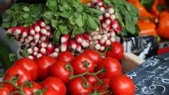 Сегодня в Казани пройдут сельскохозяйственные ярмарки