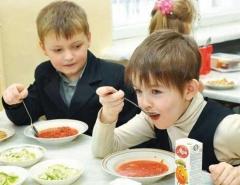 Новости  - Родители могут спросить омбудсмена по правам ребенка РТ о горячем питании в школах