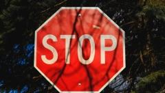 Новости  - Участок трассы М-7 закрыли на ремонтные работы