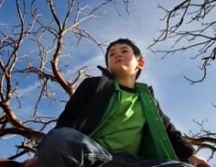 Новости  - Нижнекамский школьник в мороз около часа просидел на дереве