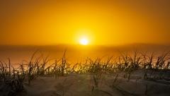 Новости  - В апреле на территорию республики придёт аномальное тепло