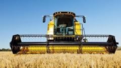 Новости Общество - Специалисты татарстанского НИИ сельского хозяйства вывели 6 сортов вирусоустойчивого картофеля