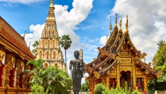 Новости Медицина - В Таиланде произошла вспышка лихорадки денге