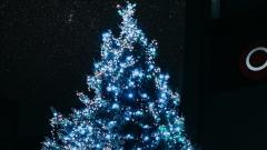 Новости Культура - В парках Казани открываются новогодние ёлки