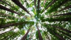 Новости Опережая события - 25 апреля в Казани пройдет две экологические акции