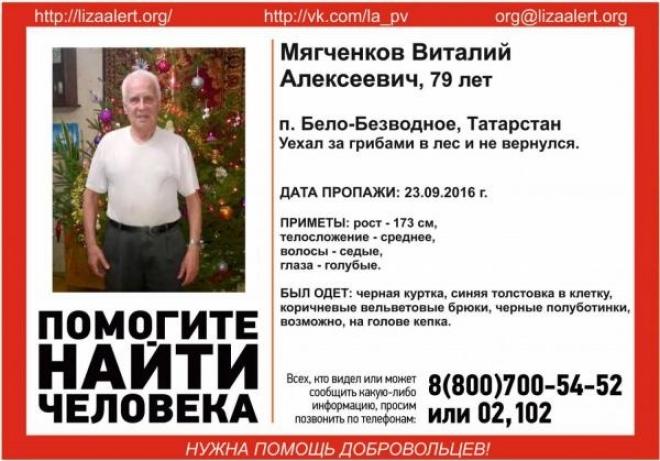 Под Казанью разыскивают пропавшего пожилого грибника