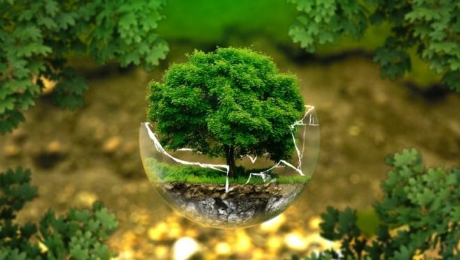 Столица Татарстана попала в топ экологичных городов