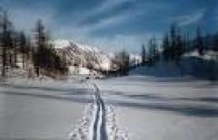 Новости  - Лыжные гонки среди школьников в Зеленодольске (Татарстан)
