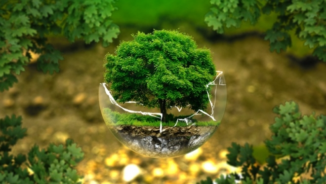 Фестиваль разумного потребления «КультТорг» пройдет в Казани