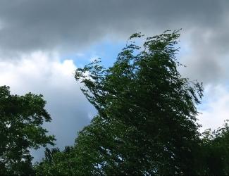Сегодня днем в Татарстане ожидается ураган