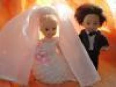 Новости  - В Татарстане набирают популярность тематические свадьбы