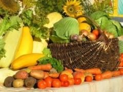 Новости  - Шавкат Сугшатов рассказал о продаже сельхозпродукции в Республике Татарстан