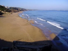 Новости  - В Казани только 4 пляжа признаны безопасными для здоровья
